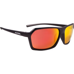 Alpina Finety Okulary, black-black matt
